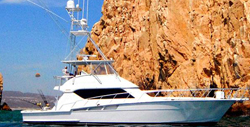 Cabo San Lucas Yacht Charters | Los Cabos Yacht Charters and Boat Rentals